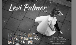 Levi Palmer