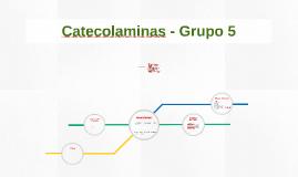 Catecolaminas - Grupo 5