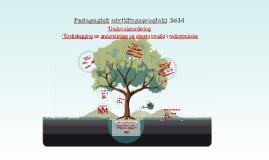 Pedagogisk utviklingsprosjekt 2014