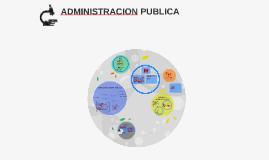 Copy of ADMINISTRACION PUBLICA
