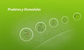 Praderas y Humedales