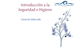 INTRODUCCION SEGURIDAD E HIGIENE