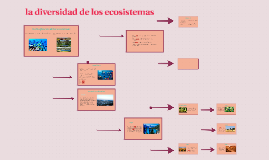 Copia de la diversidad de los ecosistemas