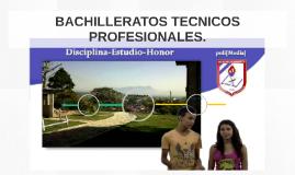 BACHILLERATOS técnicos PROFESIONALES