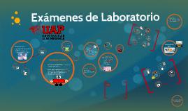 Copy of Examenes de Laboratorio y Gabinete