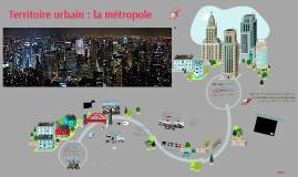 Territoire Urbain métropole