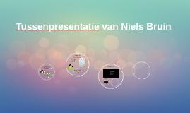 Tussenpresentatie van Niels Bruin