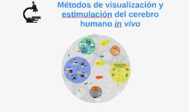 Métodos de visualización y estimulación del cerebro humano i