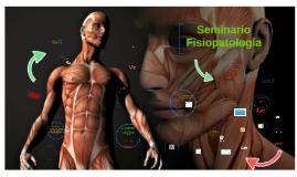 Seminario fisiopatologia
