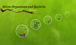Micro-Organisms and Bacteria