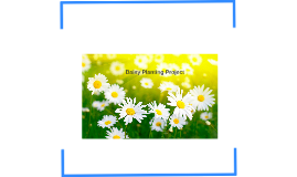 Image result for daisies hd wallpaper