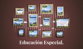 ¿Qué es la educación especial?
