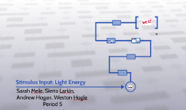 Stimulus Input: Light Energy- Wavelength, hue,intensity