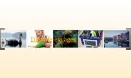 Copy of Digitale-etalages - hoe werkt het Saskia Dellevoet