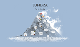 Copy of TUNDRA