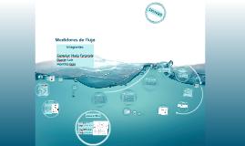 Copy of Medidores de flujo