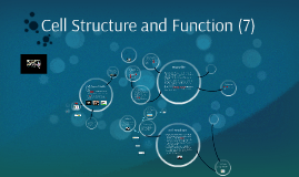 Cell Structure and Function - Chapter 7 Miller Levine