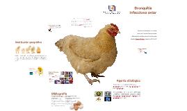 Bronquitis infecciosa aviar