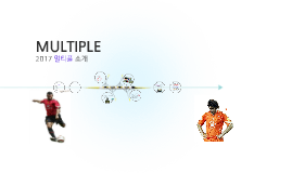Copy of MULTIPLE