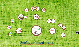 Copy of Metapoblaciones