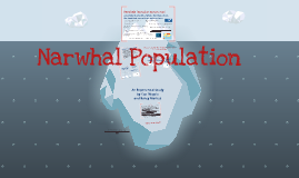 Narwhal Population ~ an Exponential Study