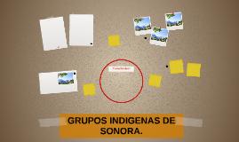 GRUPOS INDIGENAS DE SONORA.