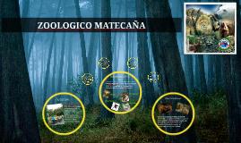 Copy of ZOOLOGICO MATECAÑA