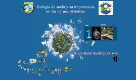 Copy of Copia de Plantilla 3D sydo.fr