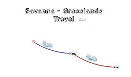 Savannah/Grasslands Biome