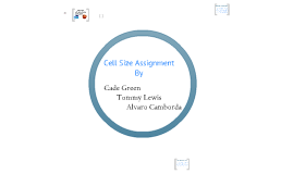 Cell Size Assignment