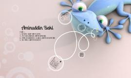 Aminuddin Baki