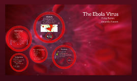 Copy of The Ebola Virus