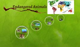 Animals in extinction