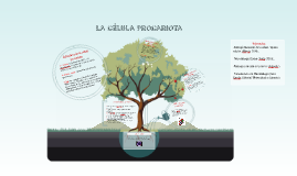 Copy of LA CÉLULA PROCARIOTA