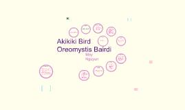 Akikiki Bird S+E
