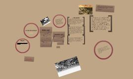 Copy of Passchendaele