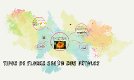 Tipos de flores según sus pétalos