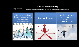 The CEO Responsibility