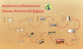Ambiente sedimentario: Dunas; desierto de Sahara