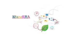 Copy of Copy of MicroRNA