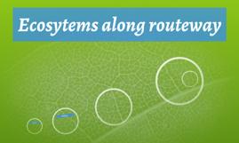 Ecosytems along routeway