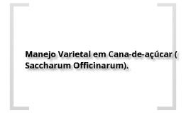 Manejo Varietal em Cana-de-açúcar ( Saccharum officinarum)