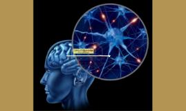 Copy of Historia de Neuropsicologia Linea del Tiempo