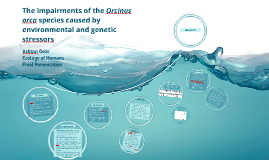 The impairments of the Orcinus orca species caused by enviro