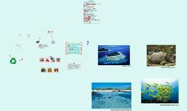 Découvrez les Îles Galàpagos, terres de Darwin