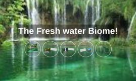 Fresh water Biome by Amelia Harris