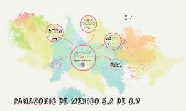 Copy of PANASONIC DE MEXICO S.A DE C.V