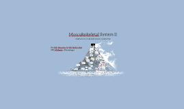 Musculoskeletal System II