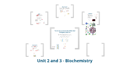 Unit 3 - Life Chemistry and Energy