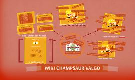 Présentation wiki champsaur valgo